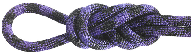 Maxim Chalk Line Purple/Black Dynamic Ropes
